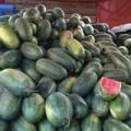 Mua sắm - Giá cả - Giá hoa quả Hà Nội gấp 10 lần miền Nam