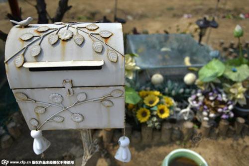 Nghĩa trang vật nuôi ở Bắc Kinh-10