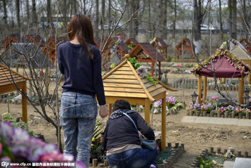 Nghĩa trang vật nuôi ở Bắc Kinh-2