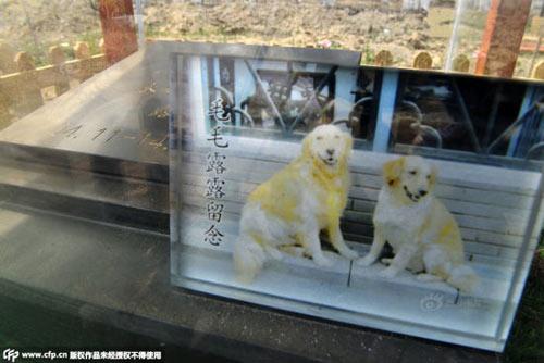 Nghĩa trang vật nuôi ở Bắc Kinh-4
