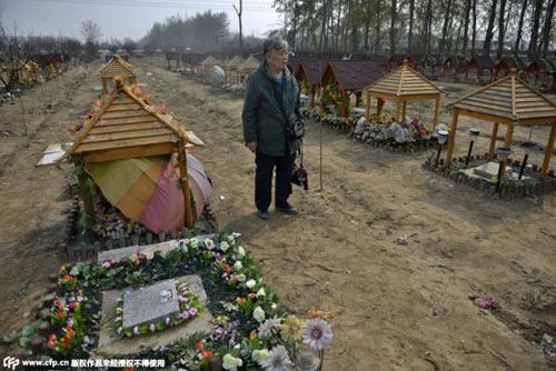 Nghĩa trang vật nuôi ở Bắc Kinh-6