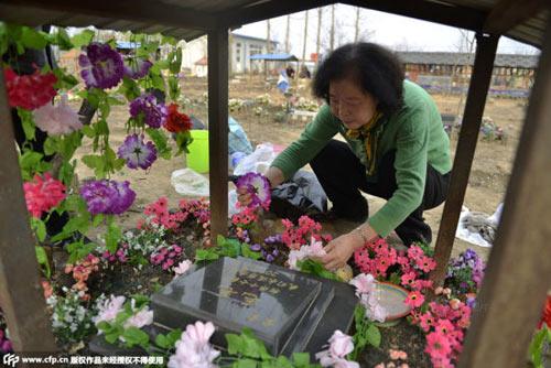 Nghĩa trang vật nuôi ở Bắc Kinh-8