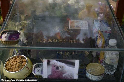 Nghĩa trang vật nuôi ở Bắc Kinh-9