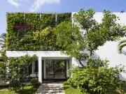 Nhà đẹp - Biệt thự Thảo Điền ngút mắt vườn treo tường thẳng đứng