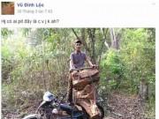 Tin trong nước - Lâm tặc 'tự sướng' và rao bán gỗ lậu trên... Facebook
