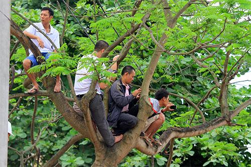 nghin nguoi doi nang co vu boi thuyen - 15