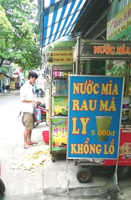 nguoi sai gon chong choi nang nong dinh diem - 5