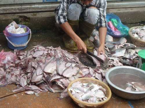 Cận cảnh đường đi của cá thối từ chợ đến quán ăn-2
