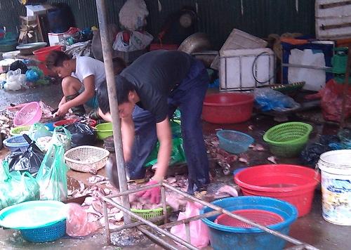 Cận cảnh đường đi của cá thối từ chợ đến quán ăn-3
