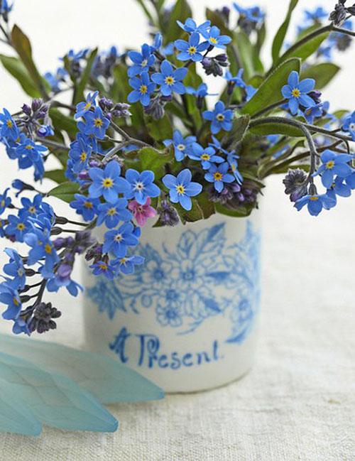Nàng trồng hoa 'Xin đừng quên em' mong tình yêu chung thủy-6