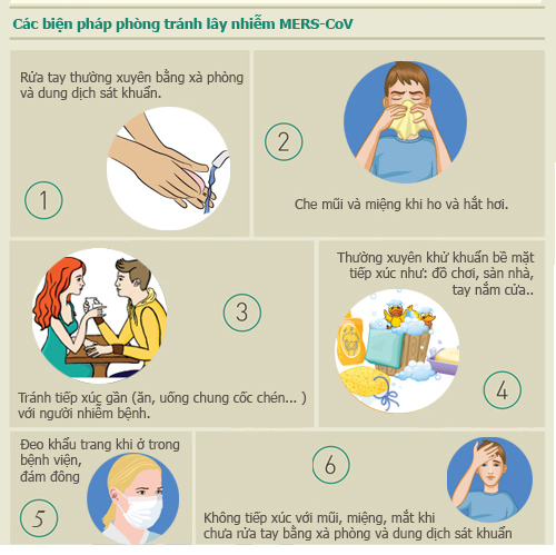 infographic: nhung su that ve dich mers-cov chet nguoi - 3