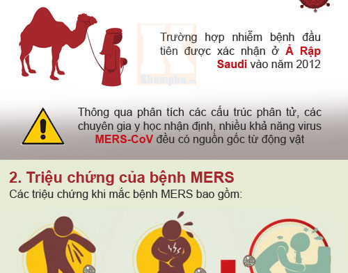infographic: nhung su that dang so ve mers-cov - 2