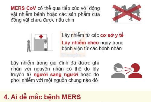 infographic: nhung su that dang so ve mers-cov - 4