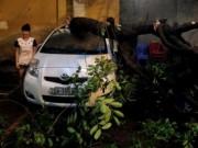 Tin tức - Đường phố Hà Nội tan hoang sau cơn lốc khủng khiếp