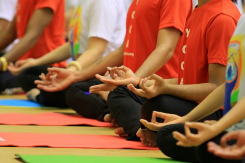 hon 500 nguoi tham gia trinh dien ngay quoc te yoga - 4