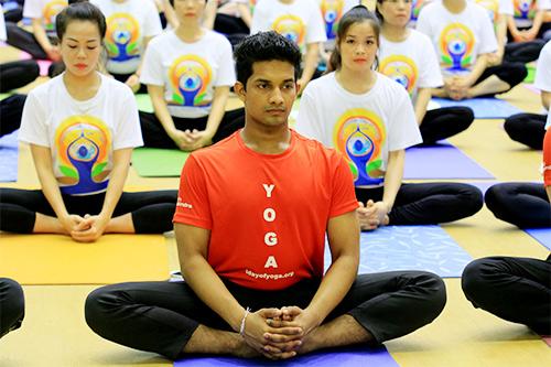 hon 500 nguoi tham gia trinh dien ngay quoc te yoga - 9