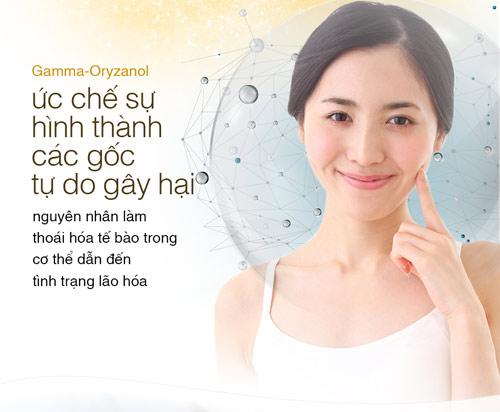gamma-oryzanol – duong chat vang cho phai dep - 2