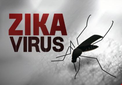 Kết quả cuối cùng 4 ca nghi dương tính với virus Zika-1