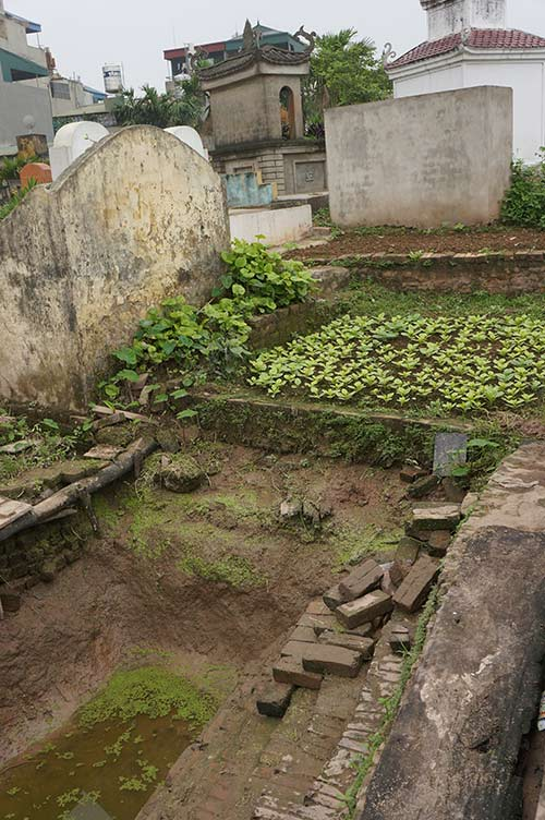 Rùng mình rau xanh trồng trên nghĩa địa ở Hà Nội-12