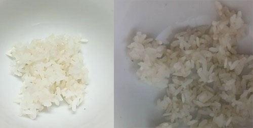 Cơm trắng đổi màu đỏ: Kết quả khác biệt sau 3 ngày nấu thử-2