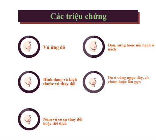 [infographic] - nhung dieu can biet ve can benh ung thu vu - 5