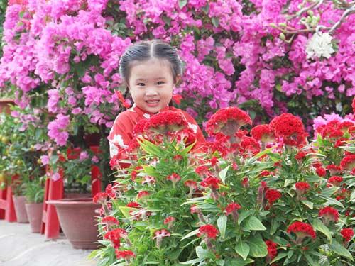 le ngoc minh khue - ad33059 - hummie tuoi nhu hoa - 3