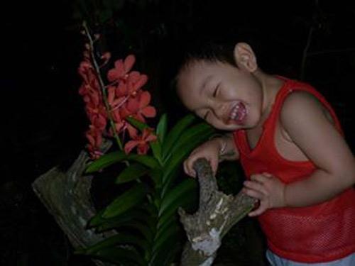 Nguyễn Nhật Thanh - AD96169 - Cậu bé hiếu động-2