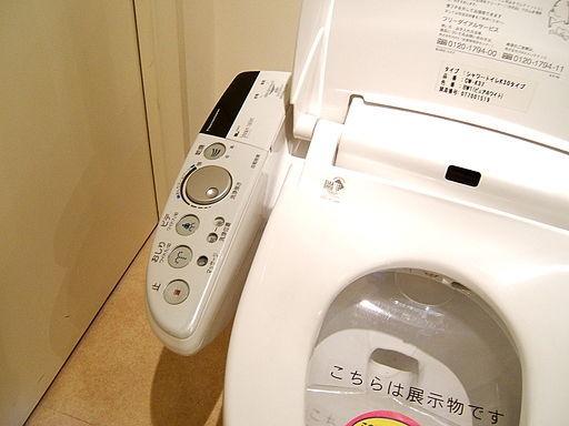 4 lí do người Nhật kị để chung toilet với nhà tắm-3