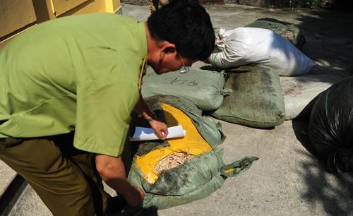 Thu giữ nửa tấn thuốc Đông y xuất xứ Trung Quốc-1