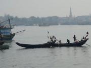 Tin tức - DN Việt thu gom cá chết chuyên xuất sang Trung Quốc (Bài 2)