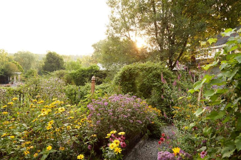 Những lí do bạn nên làm vườn, trồng rau ngay hôm nay-6