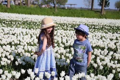 Hai thiên thần lai gốc Việt bên cánh đồng hoa Tulip đẹp như tranh-2