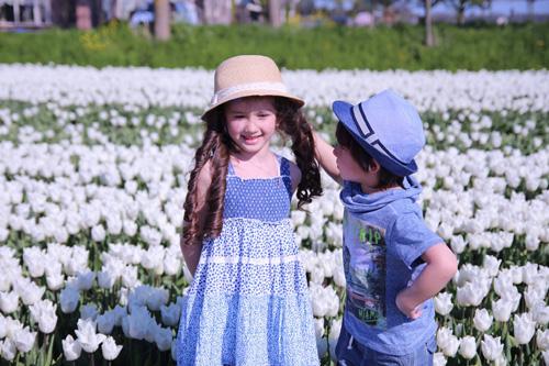 Hai thiên thần lai gốc Việt bên cánh đồng hoa Tulip đẹp như tranh-3