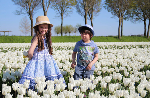 Hai thiên thần lai gốc Việt bên cánh đồng hoa Tulip đẹp như tranh-1