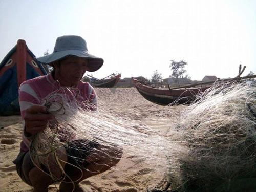 """""""Không có chuyện cá chết xếp lớp ở biển Quảng Bình""""-1"""