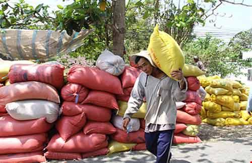 Thái Lan xả kho gạo khổng lồ, gạo Việt 'nín thở'-1