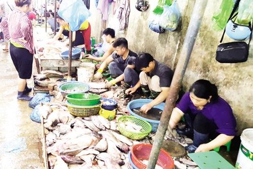Tấp nập khách 'săn' cá ươn giá rẻ tại chợ thực phẩm Hà Nội-1
