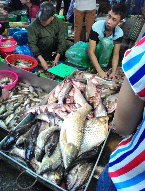 Tấp nập khách 'săn' cá ươn giá rẻ tại chợ thực phẩm Hà Nội-2