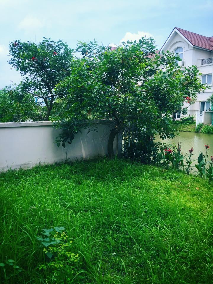 Lã Thanh Huyền hào hứng khoe biệt thự sang có vườn, cạnh sông-7