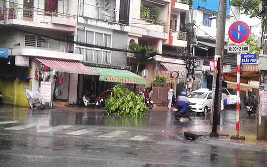 Mưa mù trời kèm lốc xoáy ở Sài Gòn-2
