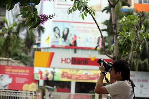 "hoa bang lang bung no ""tim troi"" thu do - 10"