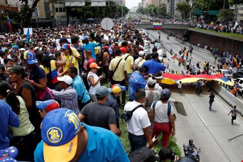 venezuela: an ca cho, meo, bo cau vi thieu thuc pham - 4