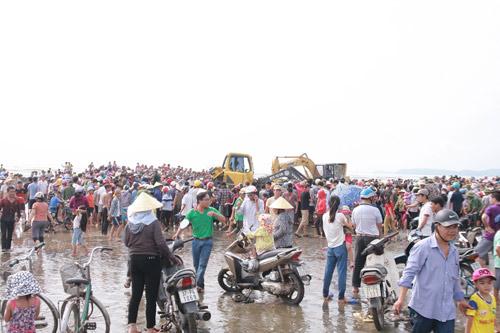 Giải cứu cá voi nặng 15 tấn dạt vào bờ biển Nghệ An-1