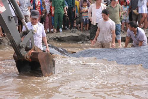 Giải cứu cá voi nặng 15 tấn dạt vào bờ biển Nghệ An-8