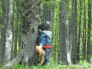 Làm mẹ - Phạt con đứng trong rừng có thú dữ và cái kết đau lòng