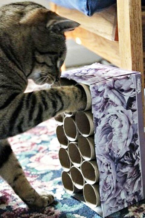 14 cách tái chế thông minh với những ống bìa bỏ đi-5