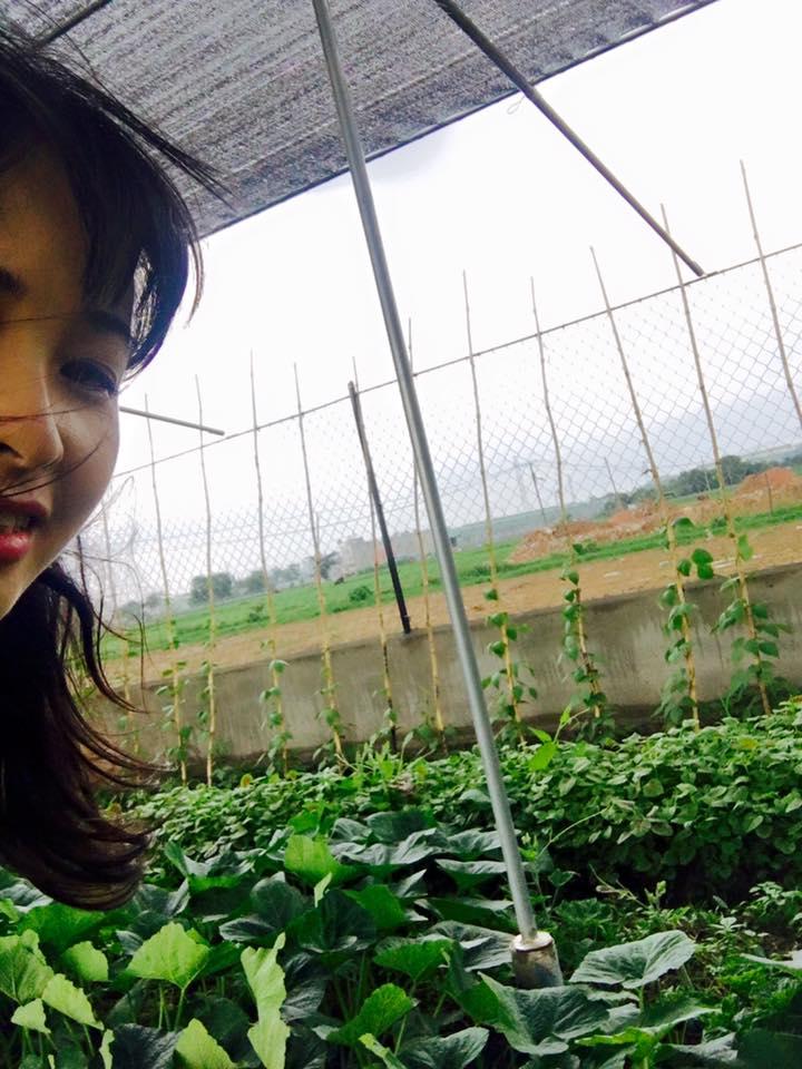 khong chi nha 100 ty, trang nhung con co vuon rau sach dang mo uoc - 3
