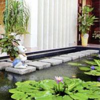 Ao hồ trong nhà: Họa nhiều hơn phúc