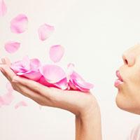 Tự làm nước hoa hồng dưỡng da