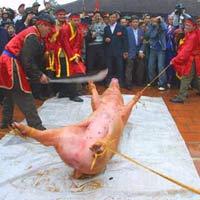Dân mạng choáng với clip 'chém lợn' rùng rợn